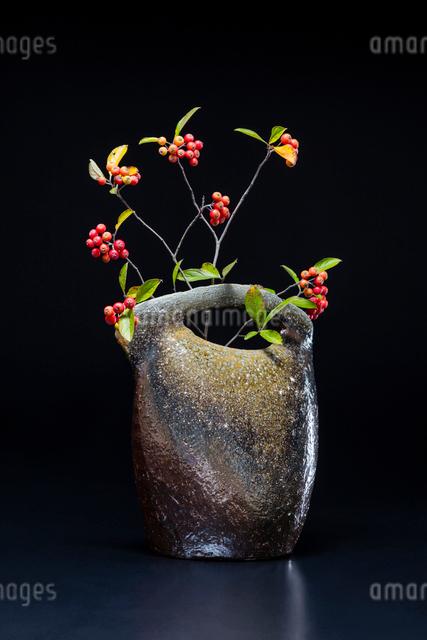 陶器の花瓶と西洋カマツカの写真素材 [FYI02306364]
