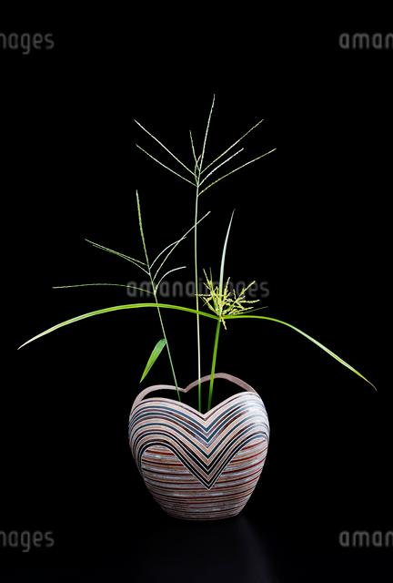 陶器の花瓶とオヒシバの写真素材 [FYI02306365]