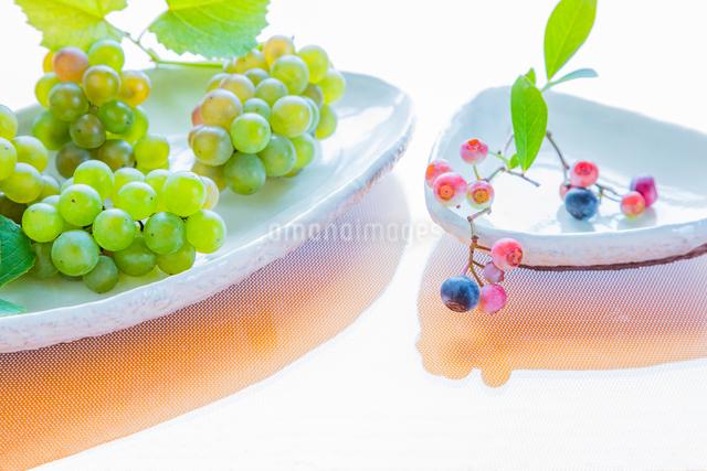 白い陶器の器とブルーベリーとブドウの写真素材 [FYI02306451]