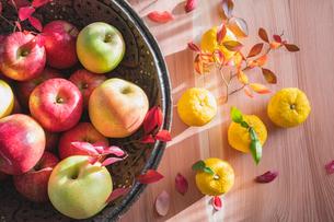 秋の味覚 リンゴとユズの写真素材 [FYI02306477]