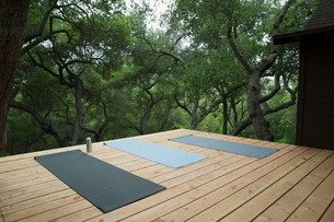 Yoga mats on deck surrounded by treesの写真素材 [FYI02306572]