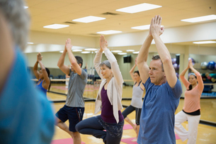 Group practicing tree pose in yoga classの写真素材 [FYI02306676]