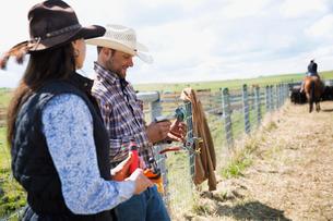 Cattle ranchers preparing vaccination equipmentの写真素材 [FYI02307186]
