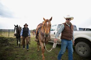 Cattle ranchers walking horses along truckの写真素材 [FYI02307346]