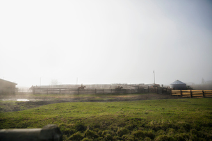 Cattle ranchers on horseback behind fence on foggy ranchの写真素材 [FYI02308386]