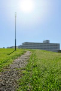 都会の公園の散歩道の写真素材 [FYI02308619]
