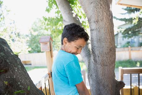Shy boy climbing treeの写真素材 [FYI02309350]