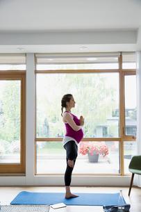 Pregnant woman practicing yoga tree pose at windowの写真素材 [FYI02309571]