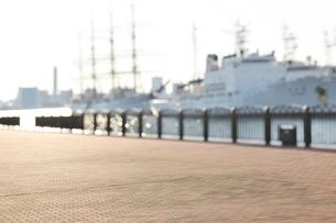 海辺の公園の石畳の広場の写真素材 [FYI02310672]