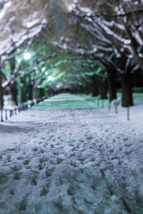 深夜の雪の神宮外苑の写真素材 [FYI02310759]