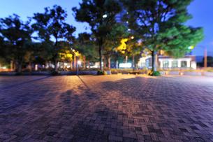 真夜中のアメリカ橋公園の石畳の広場の写真素材 [FYI02310841]
