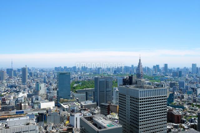 東京都庁展望室から見る都会風景の写真素材 [FYI02310915]