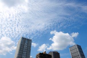 都心の高層ビルと秋の空の写真素材 [FYI02310985]