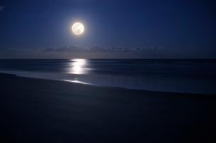 煌煌と照る九十九里浜の満月の写真素材 [FYI02310986]
