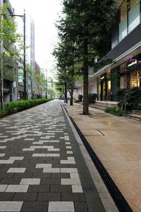 東京スクエアガーデン脇の石畳の歩道の写真素材 [FYI02311047]