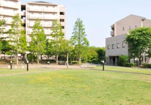 港北ニュータウンのマンションと緑地の写真素材 [FYI02311064]