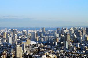 サンシャイン60展望台からの東京ドーム方向の眺めの写真素材 [FYI02311093]