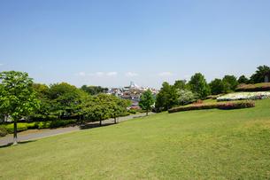 五月晴れの芝生広場の写真素材 [FYI02311108]