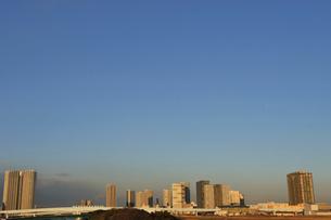 ゆりかもめと夕日に輝く高層ビル群の写真素材 [FYI02311135]