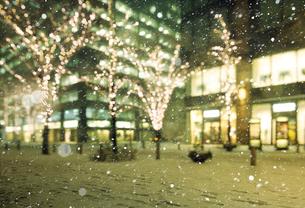 雪の降る丸の内仲通りの写真素材 [FYI02311346]