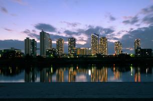 鵜の木緑地から見る夕暮れの武蔵小杉の高層ビル群の写真素材 [FYI02311364]