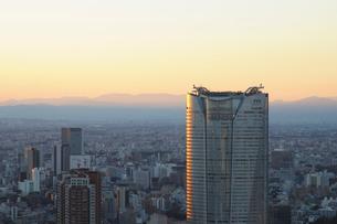 夕日に輝く高層ビルの写真素材 [FYI02311380]