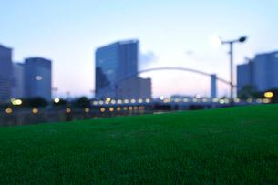 明け方の天王洲アイルのビル群と芝生の写真素材 [FYI02311382]