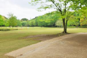 新緑の公園と土の遊歩道の写真素材 [FYI02311393]