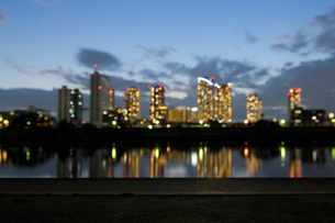 鵜の木緑地から見る夕暮れの武蔵小杉の高層ビル群の写真素材 [FYI02311396]