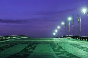 夜明けのもみじ大橋の写真素材 [FYI02311399]