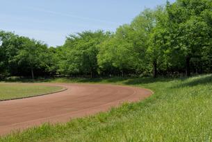 新緑のローカル色の運動場の写真素材 [FYI02311410]