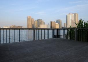 晴海運河岸より見る豊洲の高層ビル群の写真素材 [FYI02311420]