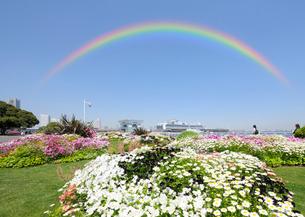虹と山下公園の花と豪華客船の写真素材 [FYI02311475]