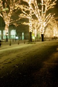 雪の降る丸の内仲通りの写真素材 [FYI02311481]