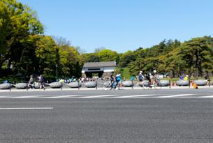 内堀通りと桜田門の写真素材 [FYI02311482]