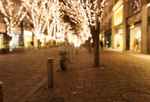 丸の内仲通りのクリスマスイルミネーションの写真素材 [FYI02311509]