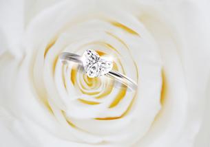 バラとハートのリングのイラスト素材 [FYI02311835]