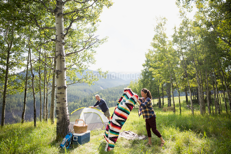 Senior couple preparing campsite in sunny rural fieldの写真素材 [FYI02312208]