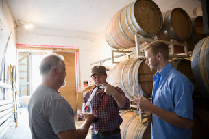 Male vintners checking and tasting wine in winery barrel roomの写真素材 [FYI02312288]