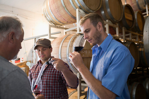Male vintners tasting and checking red wine in winery barrel roomの写真素材 [FYI02312909]