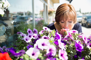 Woman smelling purple petunia flowers at flower shop storefrontの写真素材 [FYI02313114]