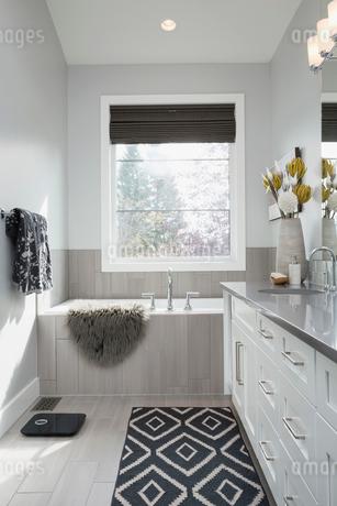 Elegant, modern home showcase interior bathroomの写真素材 [FYI02314418]