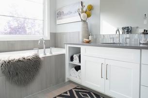 Elegant, modern home showcase interior bathroomの写真素材 [FYI02314511]