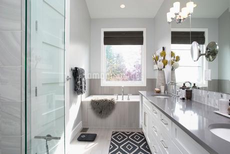 Elegant, modern home showcase interior bathroomの写真素材 [FYI02315393]