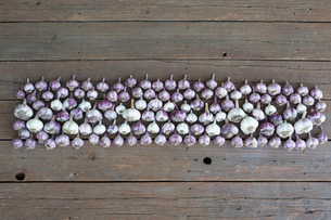 Overhead view of purple garlic in a row on wooden backgroundの写真素材 [FYI02315499]