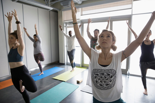 Yoga class practicing tree pose with arms raised in studioの写真素材 [FYI02317727]