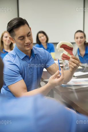 Physiotherapists with model training in conference room meetingの写真素材 [FYI02318702]
