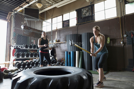 Strong woman hitting large tire with sledgehammer in crossfit training at gymの写真素材 [FYI02318775]