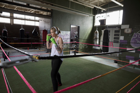 Female boxer listening to music with headphones, shadow boxing in boxing ring at gymの写真素材 [FYI02318779]