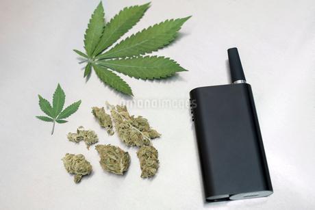 Knolling of marijuana leaves, buds and vaporizerの写真素材 [FYI02318835]